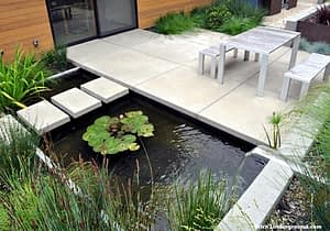 3 Key Tips for Creating Your Own Pond