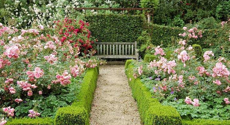 Great Ideas For Garden Design