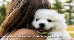 Importance of Health Insurance for A Pet and Family as Well