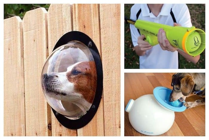 Cool Pet Accessories