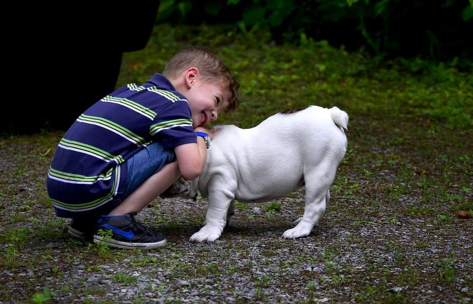 How to Instill a Love of Pets within Your Child