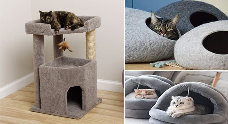 Cool Cat Beds and Cat Feeders - 3 Basic Types of Cat Furniture to Choose From