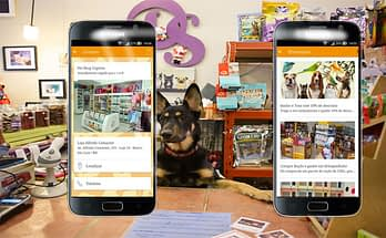 Choose the ideal On-line Pet Shops